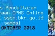 1387 Pelamar Sudah Mendaftar CPNS