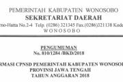 Pengumuman Seleksi Penerimaan CPNS 2018